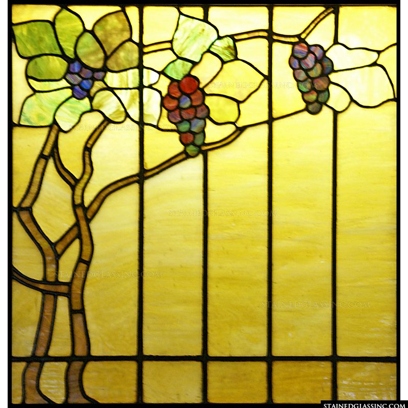 Grapevine Window