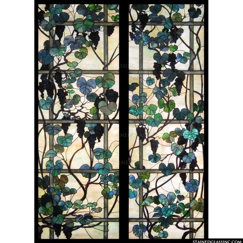 Grapevines and Trellis