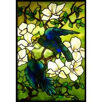 Parrots and Blossoms