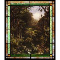 Brazilian Forest