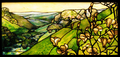 Rolling Landscape with Magnolias